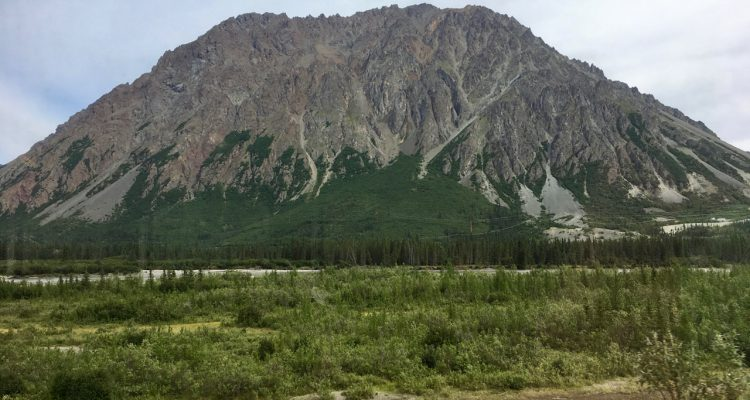 denali mckinley park narodowy usa national park