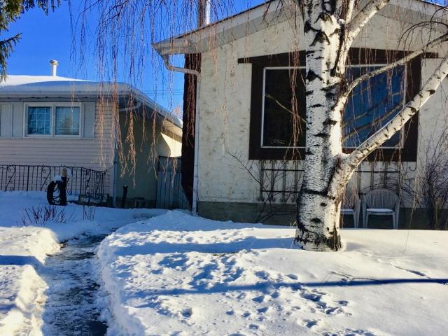 Śnieg w Calgary