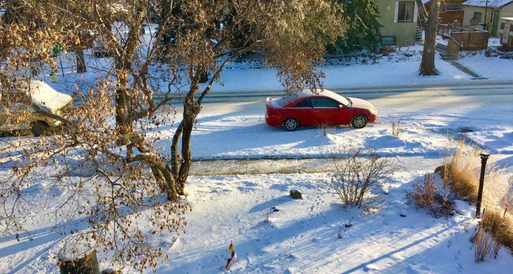 Zimowy widok na ulicę w Edmonton opruszoną śniegiem.